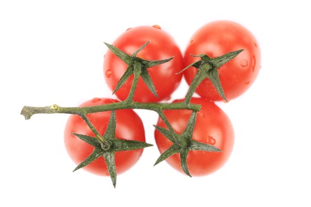 Cherry tomatoes on branch. Isolated on a white background. photo