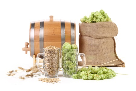 humulus: Two mugs with barley and hop.