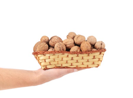 Hand holdind basket with walnuts. photo