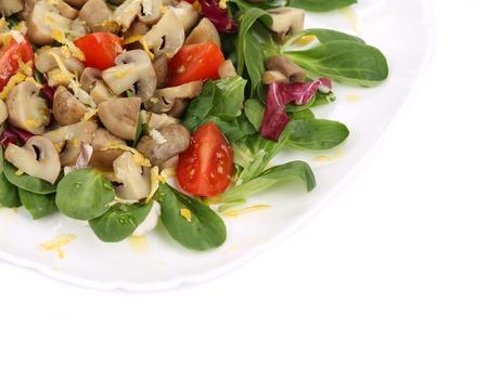 Close up of mushroom salad. Whole background. photo