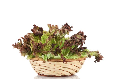 Wicker basket with lettuce.  photo