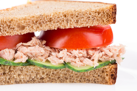 Close up of tuna sandwich. Whole background. photo