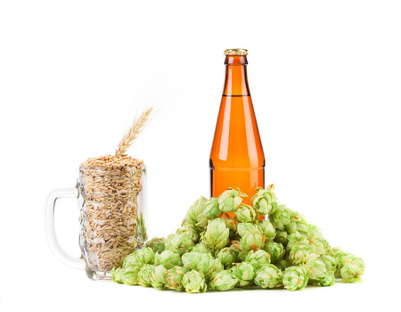 Mug with hop and bottle of beer. Isolated on a white background. photo