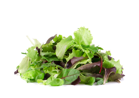 Green and red leaf of lettuce. Isolated on a white background. Stock Photo