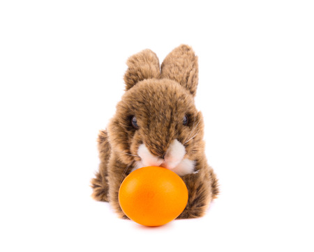cosy: Easter rabbit toy with orange egg isolated on white