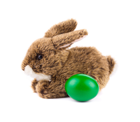cosy: rabbit toy isolated on white background in closeup