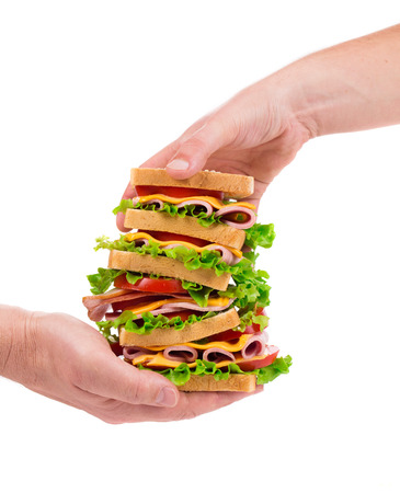 multi grain sandwich: Delicious Sandwich in hands closeup isolated on the white background Stock Photo