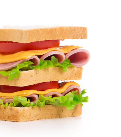 multi grain sandwich: Delicious Sandwich closeup isolated on the white background