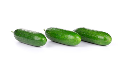 Fresh cucumber in a row. Isolated on a white background. photo