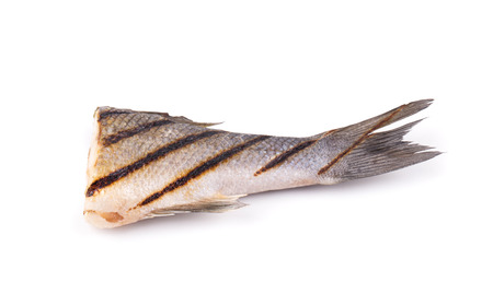 fish tail: Grilled fish tail. Isolated on a white background.