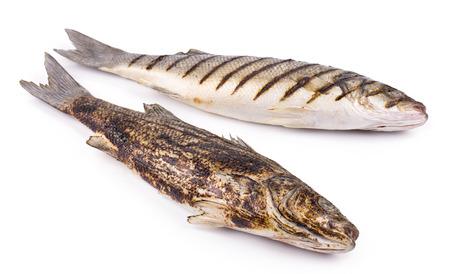 plato de pescado: Pescados a la brasa aislados en el fondo blanco de cerca Foto de archivo