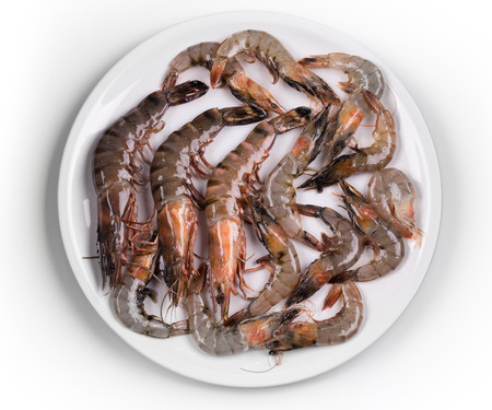 jhy: Some raw shrimps on a white plate closeup Stock Photo
