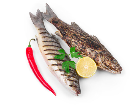 Two grilled seabass fish. Isolated on a white background. photo