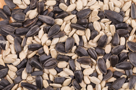 semen: Bunch of sunflower seeds close up. Whole background. Stock Photo