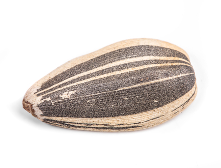 semen: sunflower seed on a white background closeup