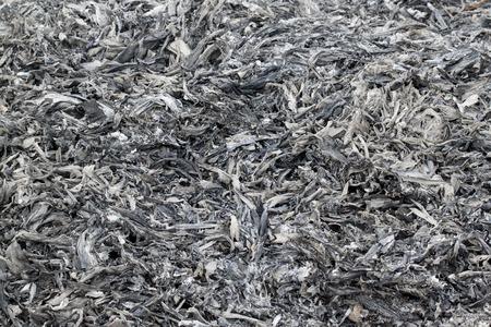 ash: Gray ash