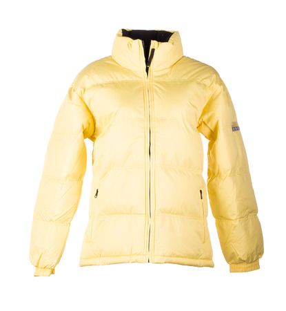 yellow jacket: yellow jacket isolated over white background closeup Stock Photo