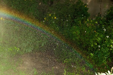 lawn sprinkler: A closeup view of a rainbow and water drops from a lawn sprinkler spraying water Stock Photo