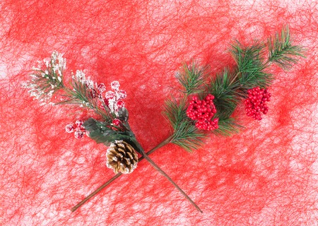 fluff: Christmas artificial branch closeup. Located on a red fluff background.