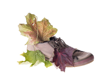 shoe strings: Old gymshoes and autumn leaf. Isolated on the white background.