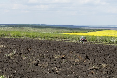 Tractor plowing field. Landscape with an apple orchard and rapeseed field. Stock Photo