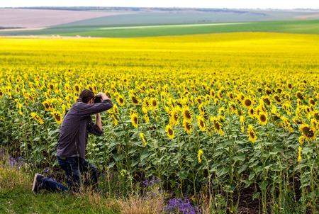 ifestyle: Man in shirt photographing sunfower field. Summer shot.