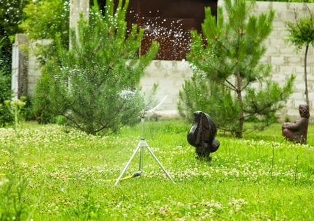 sprinkle system: Working garden sprinkler on the green lawn with sculptures in the backyard.