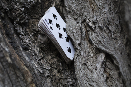 Pack of plaing cards stick out from the crack of a ring. Stock Photo