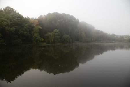 specular: Morning on the lake. A fog on the water and reflection of a forest in the lake. Stock Photo