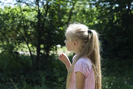 Cute blond little girl blowing a dandelion. Stok Fotoğraf