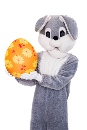 Big Easter bunny hold colorful egg. Studio portrait isolated over white background photo