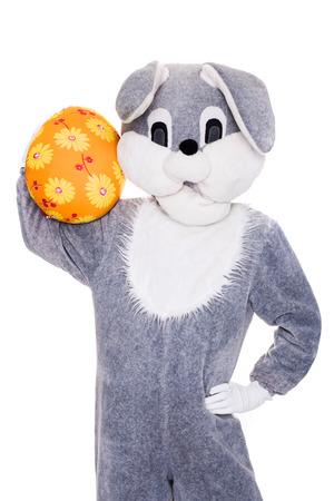 Big gray plush bunny hold Easter egg. Studio portrait isolated over white background photo
