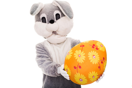 Big bunny giving colorful Easter egg. Studio portrait isolated over white background photo