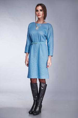 Schöne sexy Frau im blauen beiläufigen klassischen Kleid Mode Schuhe Stil Zubehör Handtasche Katalog Kleidung Sammlung.