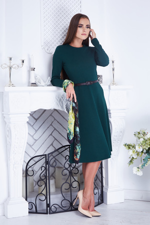 slinky: Beautiful sexy luxurious well-groomed young woman in a green slinky dress earrings with diamonds and watches long black hair standing in an interior with white walls interior fireplace candle flower Stock Photo