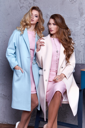 Two beautiful business woman lady style perfect body shape brunette hair wear blue white pink dress coat jacket elegance casual style glamour fashion bag accessory shoes jewelry interior luxury party. Imagens - 83497152