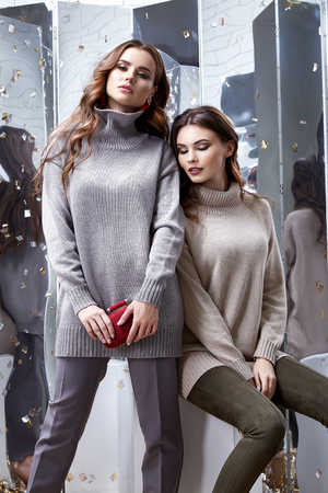 Portrait of two woman wear business style clothes office casual meeting collection accessory bag wool winter sweater sexy glamour fashion model beauty face long brunette hair body friend colleague.