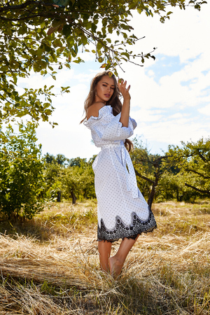 Beautiful young sexy woman long hair bright makeup nature background landscape dry spike grass and apple trees garden summer model dressed in light white cotton dress accessory.