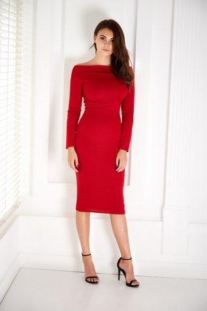Beautiful sexy young business woman brunette hair with evening make-up wearing a red skinny dress and high-heeled shoes  business clothes for meetings and walks fall collection perfect body shape. Foto de archivo