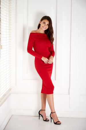 Beautiful sexy young business woman brunette hair with evening make-up wearing a red skinny dress and high-heeled shoes  business clothes for meetings and walks fall collection perfect body shape. 写真素材