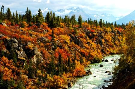 alaska scenic: Alaska River