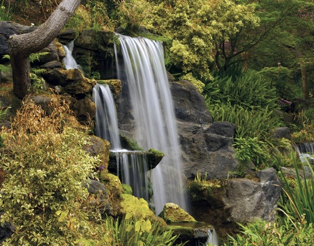 Waterfall at Los Angeles garden in the fall photo