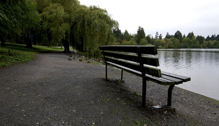 Park bench by duck pond in Canada photo
