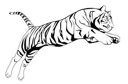 siberian tiger: tiger jump Illustration