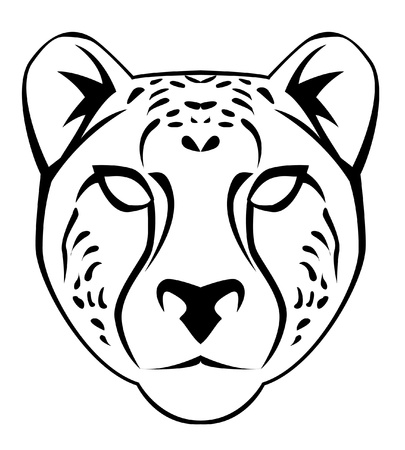 cheetah face Stock Vector - 17444603