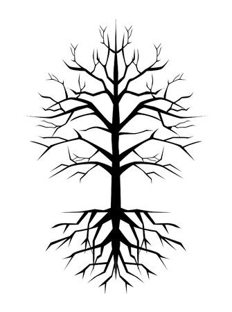 leafless: old tree