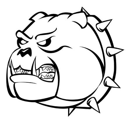 bulldog wütend