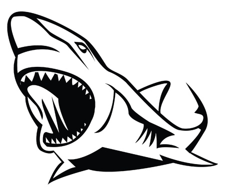 cartoon shark: shark