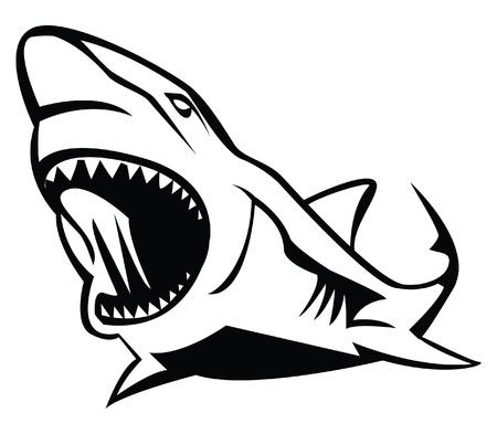 shark cartoon: tiburón