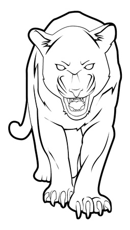 mountain lions: panther